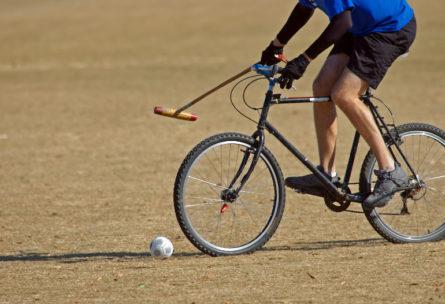 Le polo-vélo - IStock